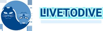 Livetodive Duikopleidingen en Duikteam Waddinxveen